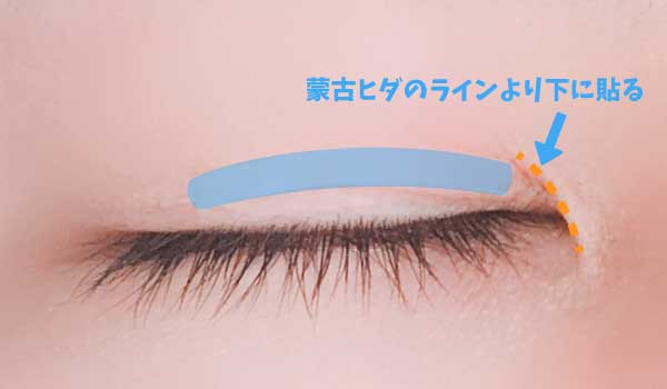 寝る時に貼るアイテープは蒙古ヒダより下のラインを意識する